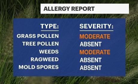 Dotcom_NYC_Allergy.jpg